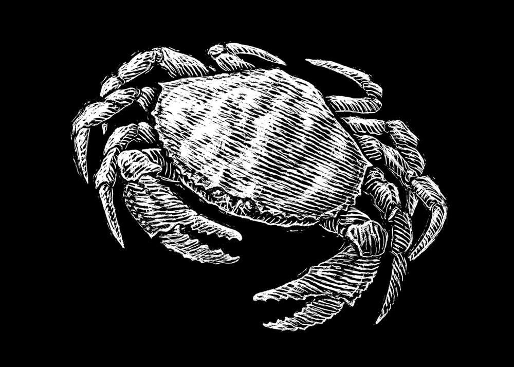 HUM-crab_