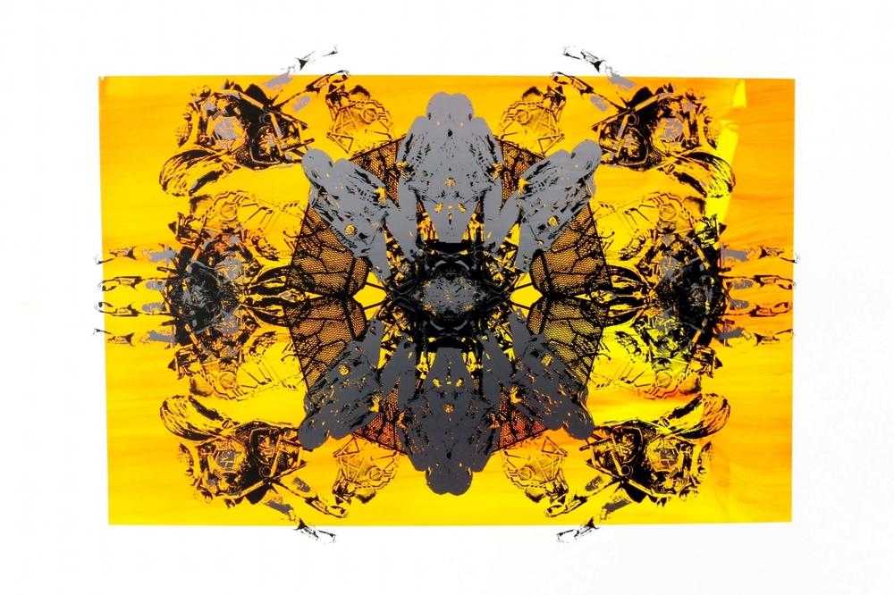 """'SPINING ORANGE', 2016                 24""""X18"""""""