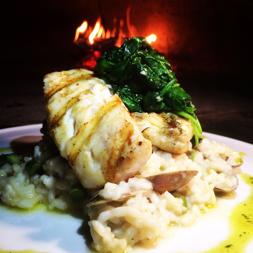 Grilled Haddock