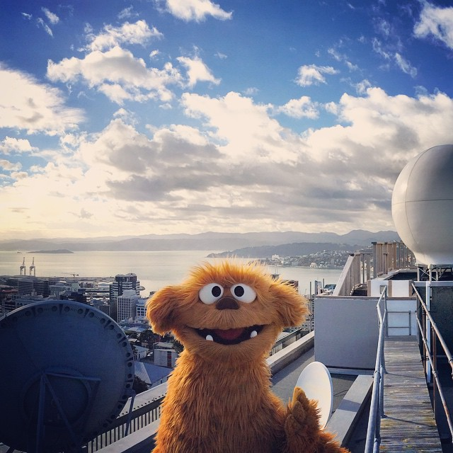 Can you guess what Moe is learning about way up high on a beautiful day in Wellington?