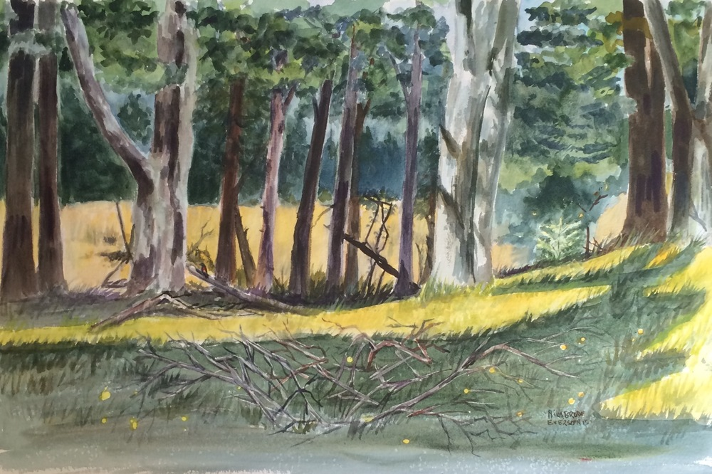 "Nina Brode Everson.  ""A Walk in the Woods,"" watercolor, half-sheet, matted and framed. More work by this artist at WVHighlands Artisans Gallery and online at  www.wvhighlands.net    FMV   $500      I    GUAR PUR   $625      I    MIN BID$200      I    BID INC$10"
