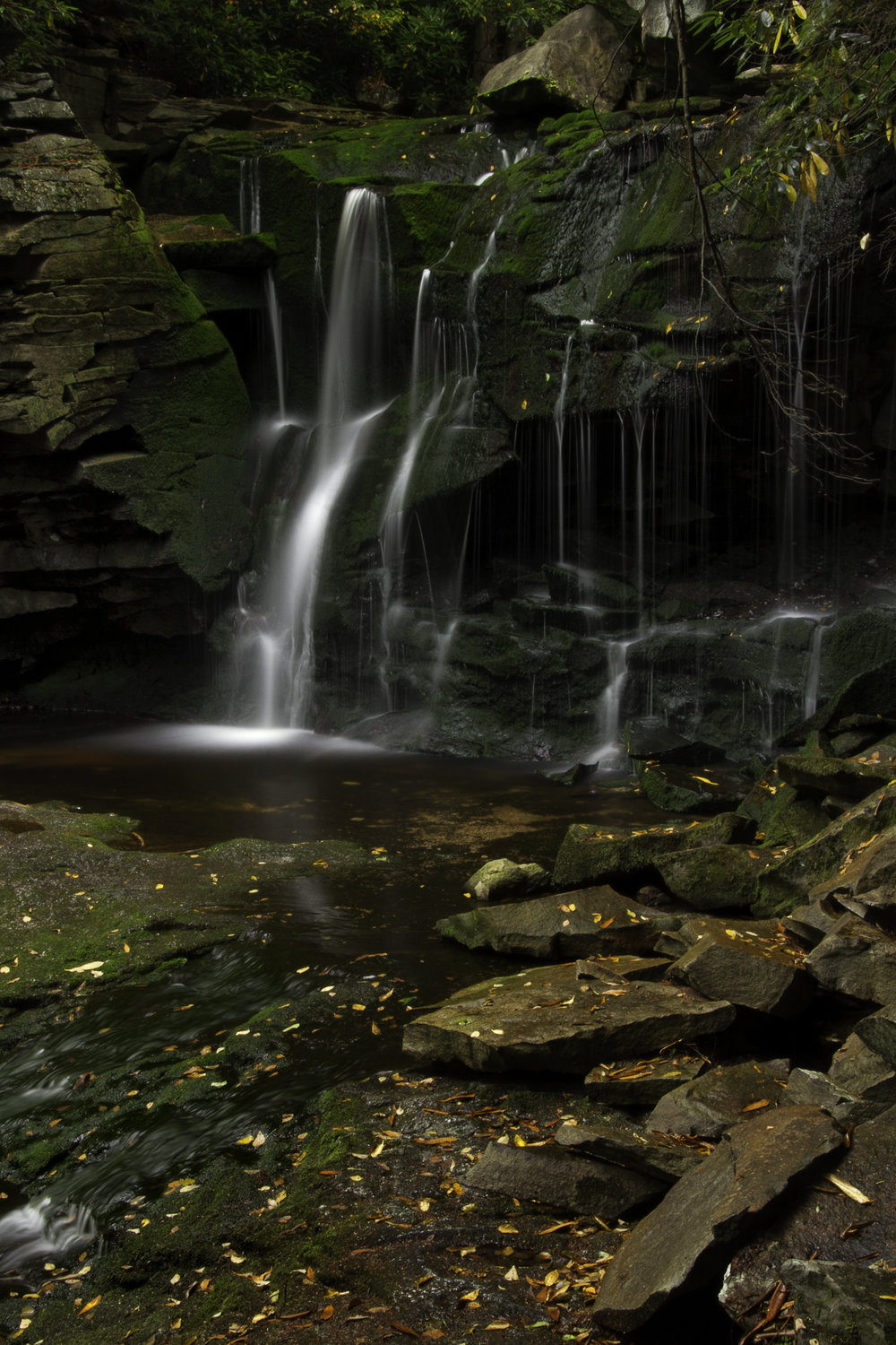 """Elakala Falls"" by Beth Spencer Auction Item #108    Photography"