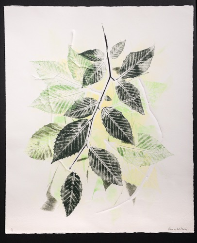 """Summer's Green"" by Bruce Wilson Auction Item #145   Monoprint, float-mounted, framed under museum glass,  28"" x 23"""