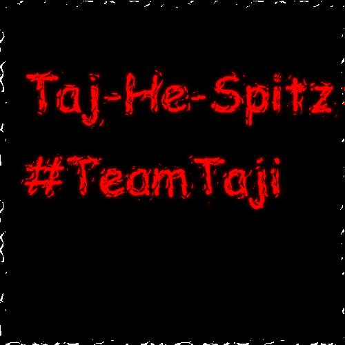 TeamTaji.png