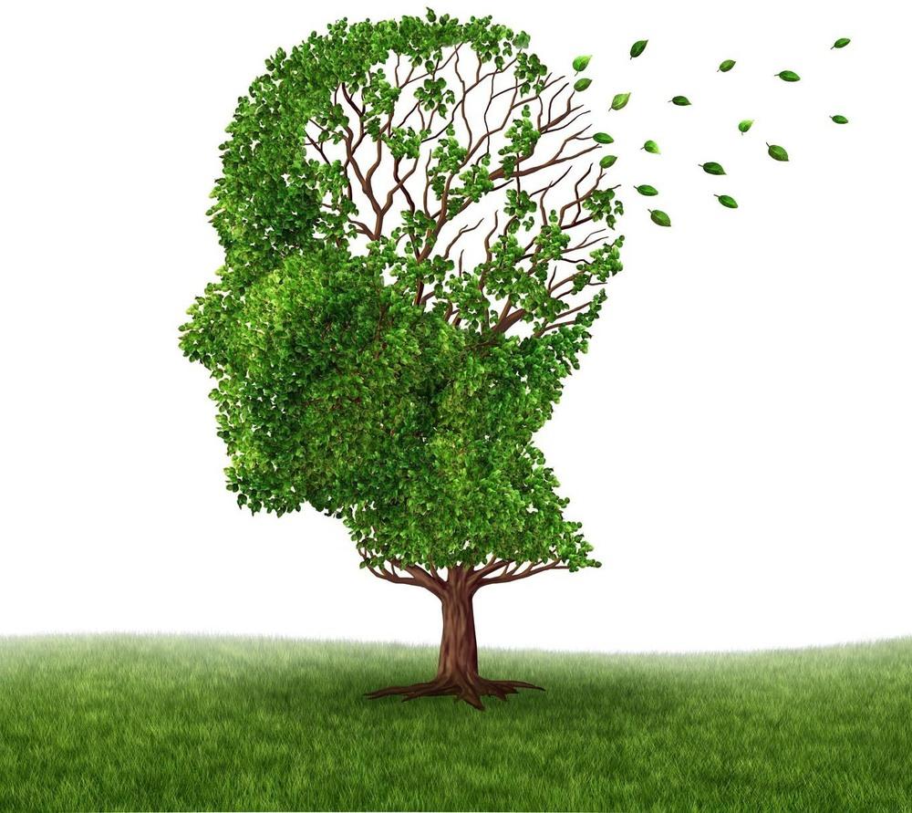 brain-tree.jpg