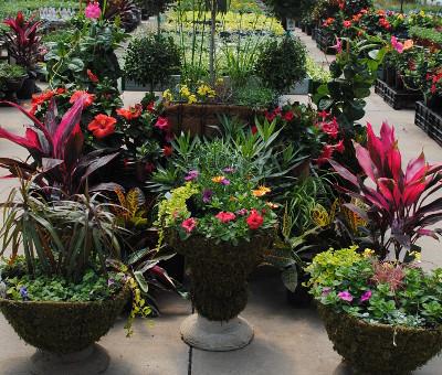 custom-planting.jpg