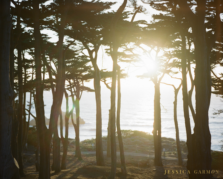 California Coast by Jessica Garmon, Film Wedding Photographer