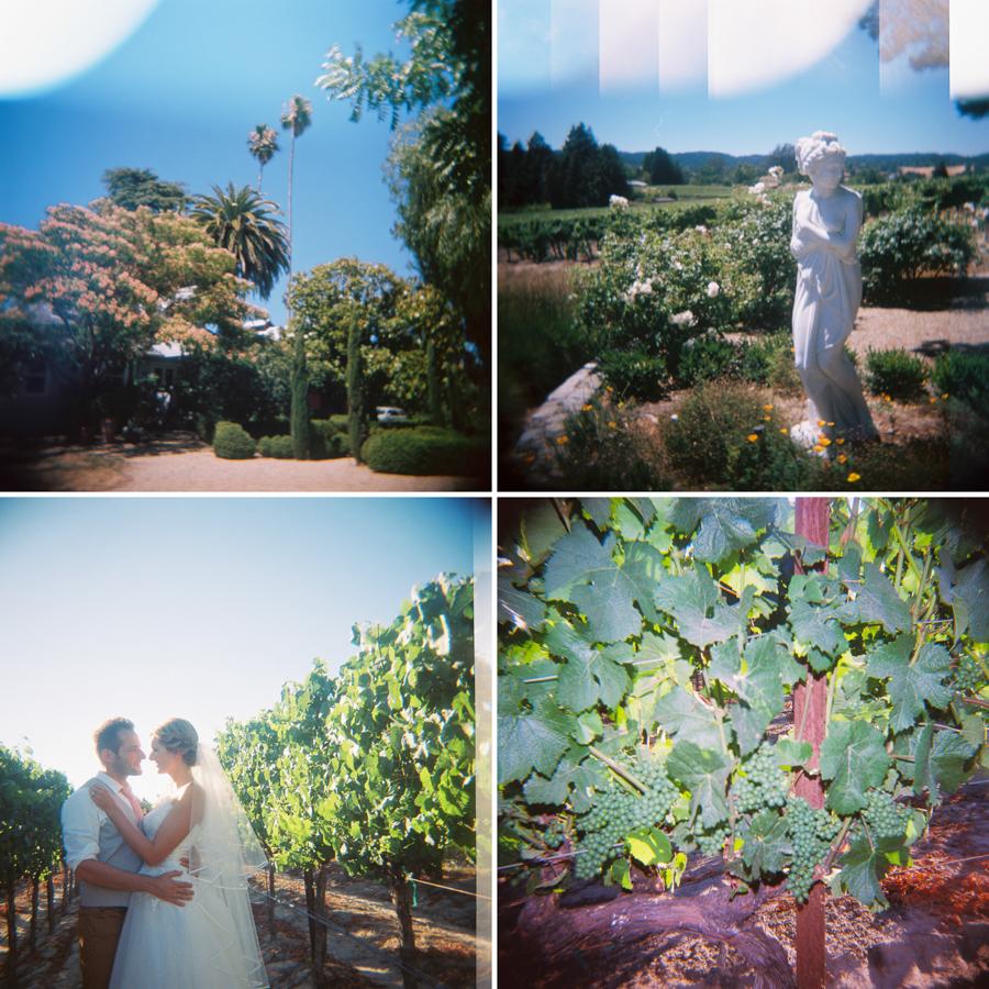 Napa, California Wedding by Jessica Garmon-031.JPG