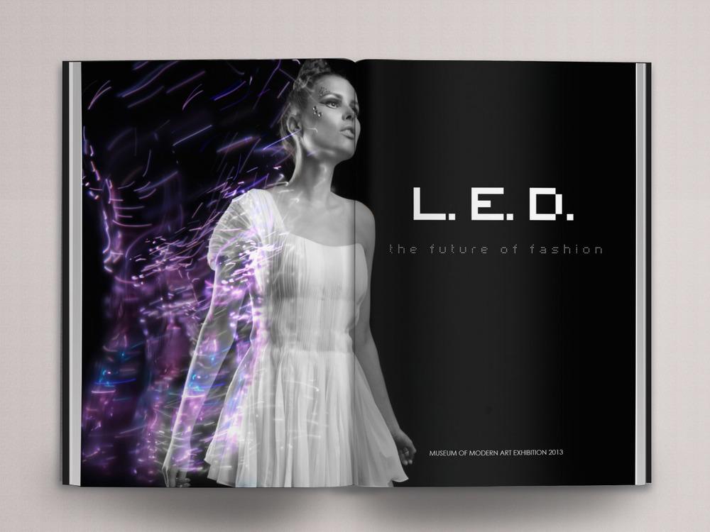 LED_p1.jpg