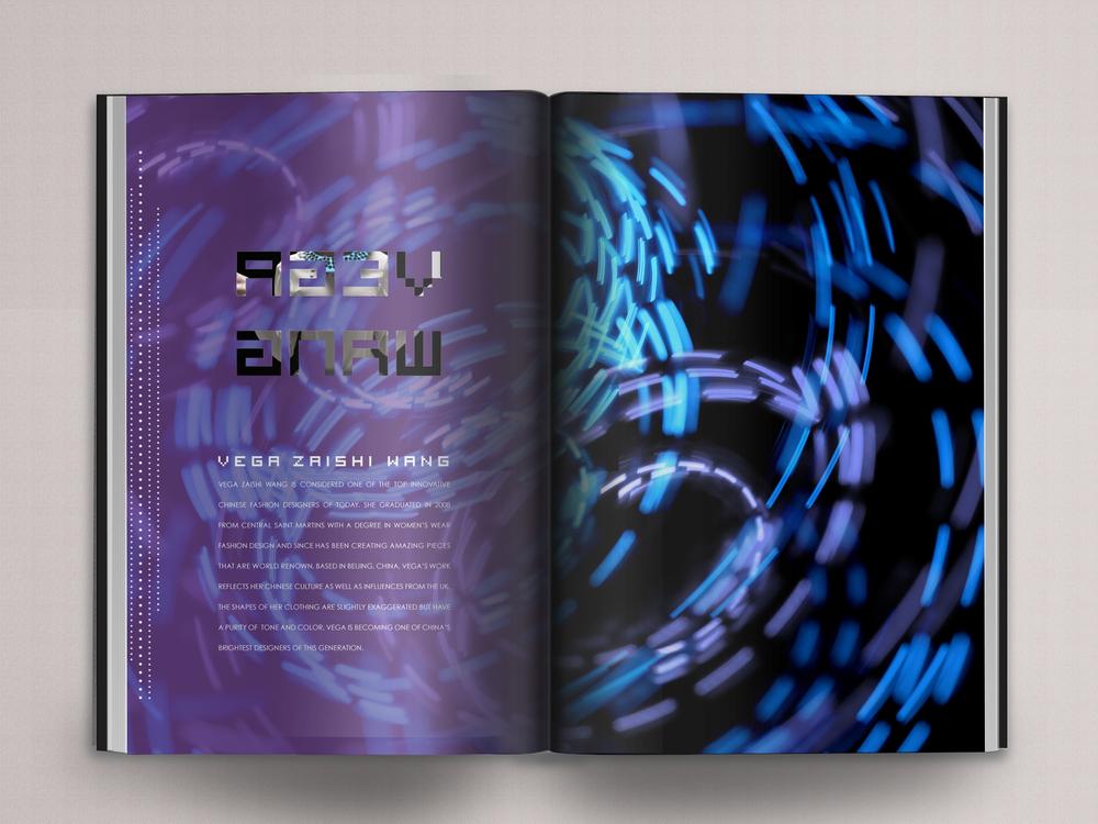 LED_p13.jpg
