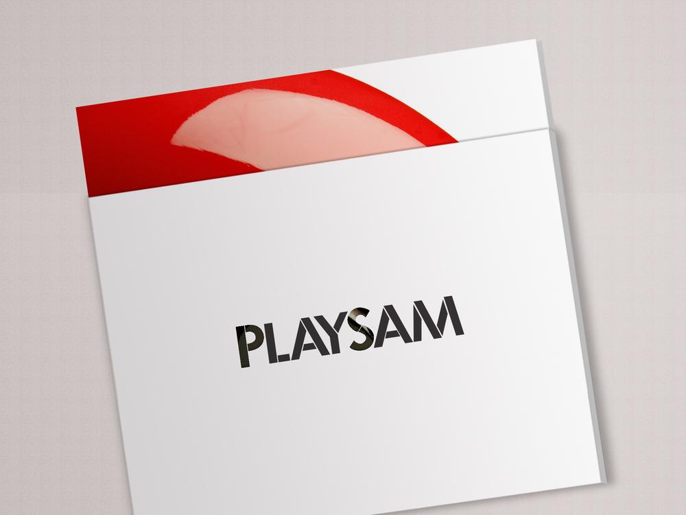 Playsam_cover_B.jpg