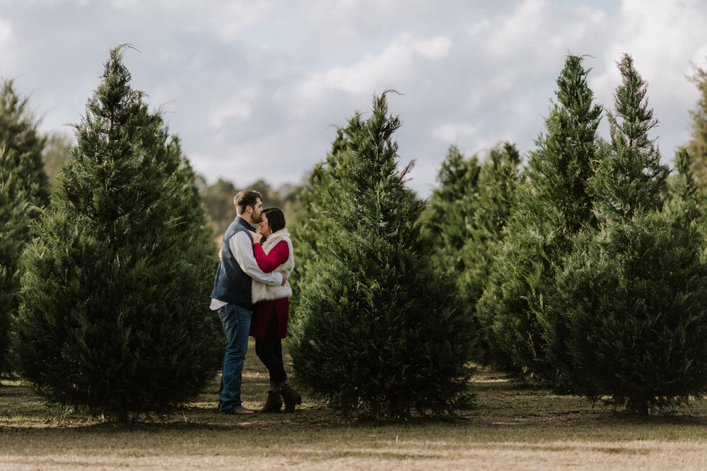 Hattiesburg, Mississippi Engagement Photographer - Thomley's Christmas Tree Farm