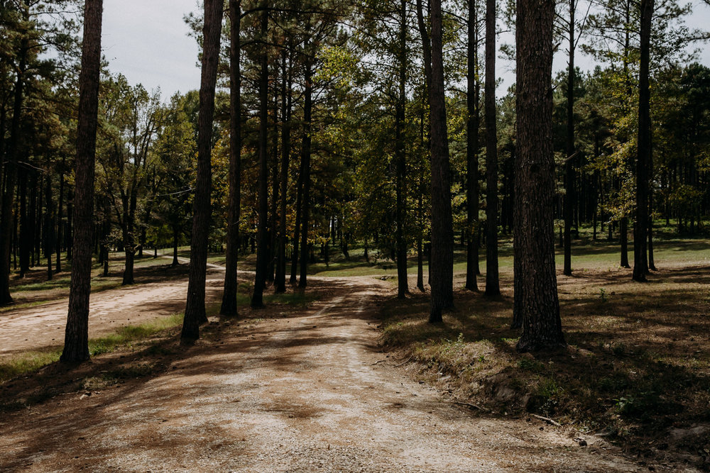 Driveway to Rasberry Green in Soso, MS
