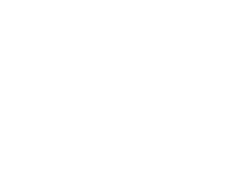 portfoliotab.png