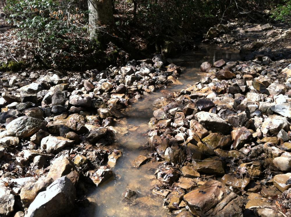 Creek Crosings 3.jpg