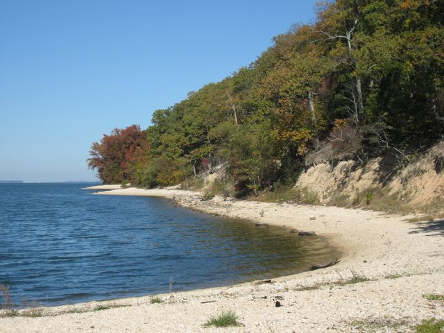 lake_view_shore.JPG