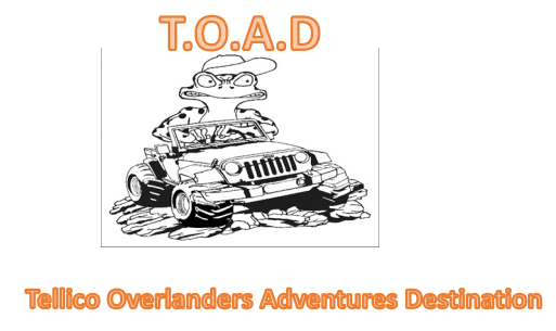 TOAD_logo