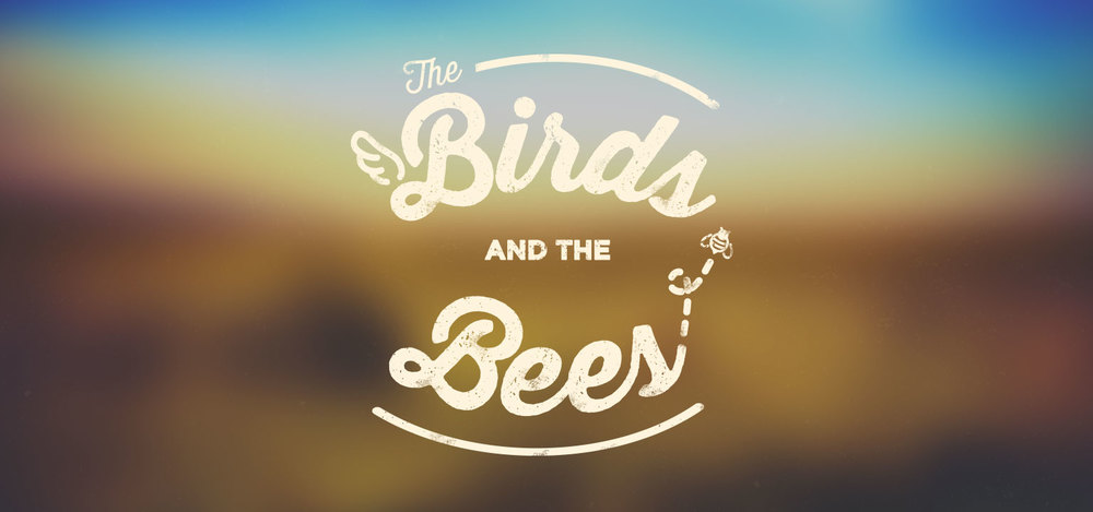 Sunday Mag: The Birds and the Bees | Shane Harris