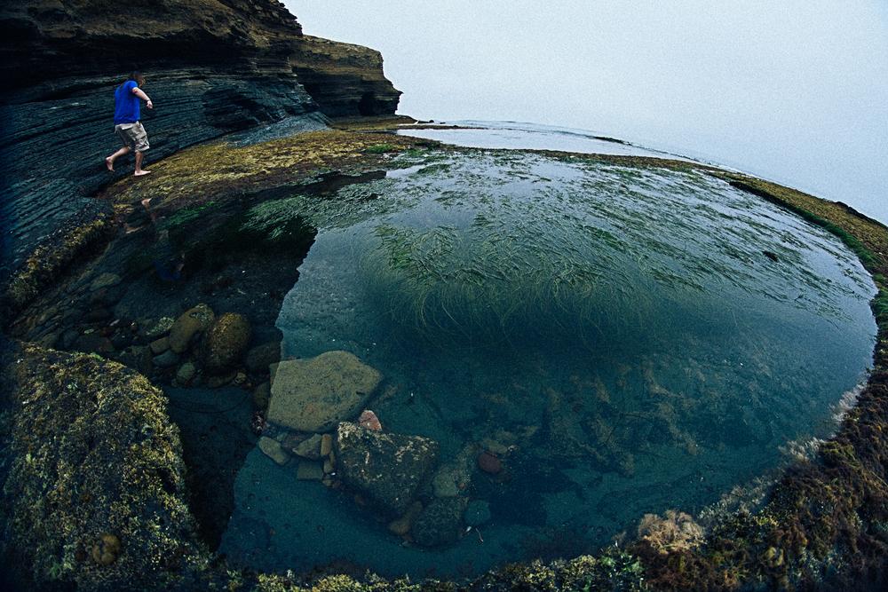 150619 low tide-7253.jpg