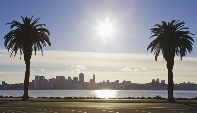 SF Photo.jpg