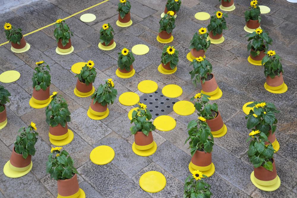 BAG disseny livingthings voltasol temps de flors 03.JPG