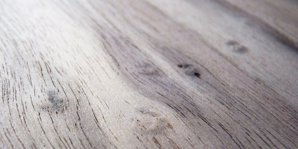 walnut close up.jpg