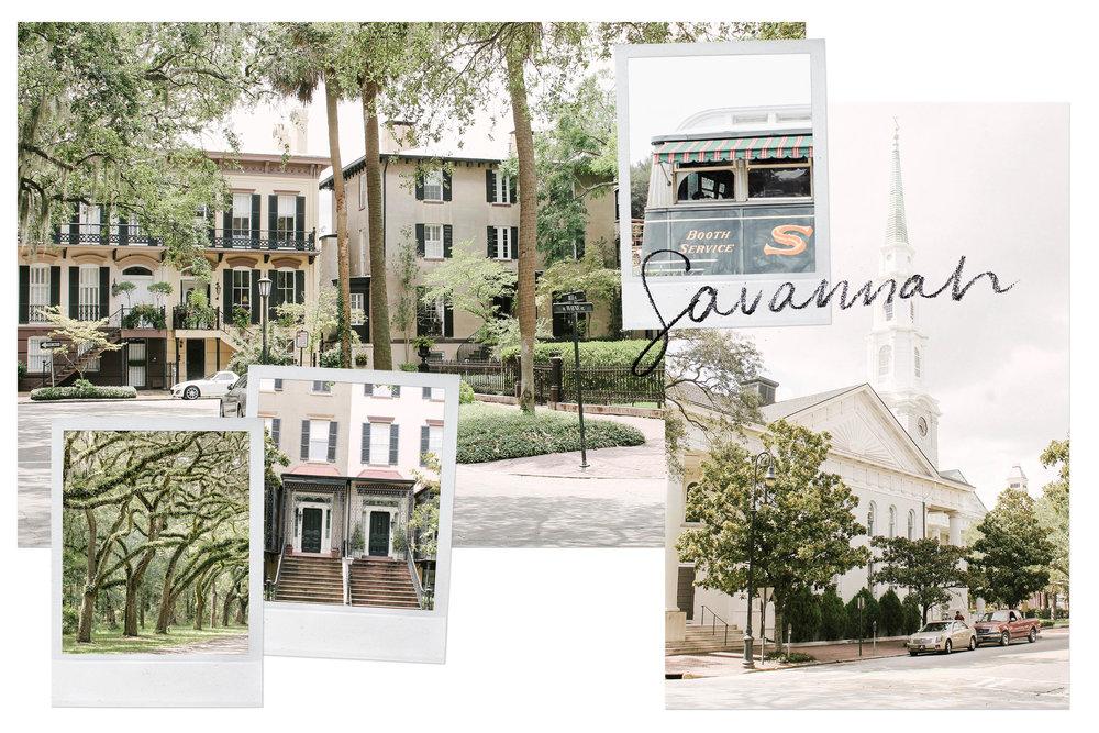 Savannah_cover.jpg
