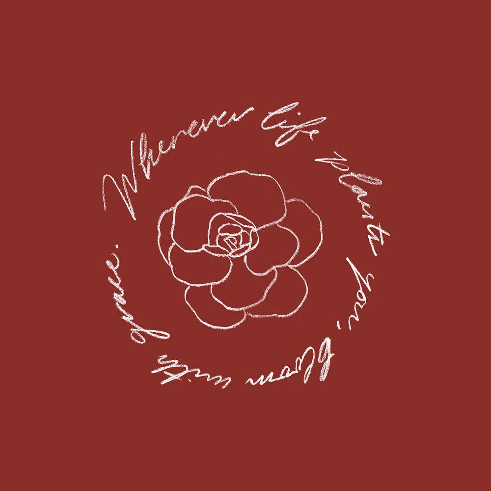 bloom_web.jpg