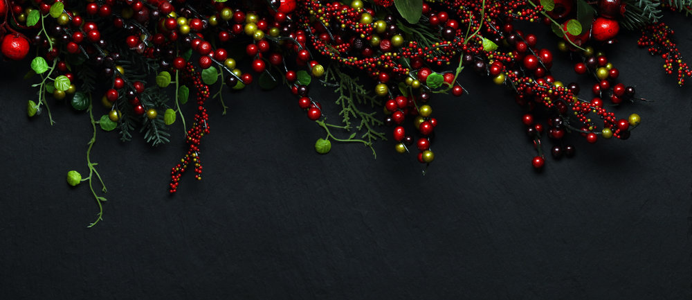 Christmas tree banches and red berries background