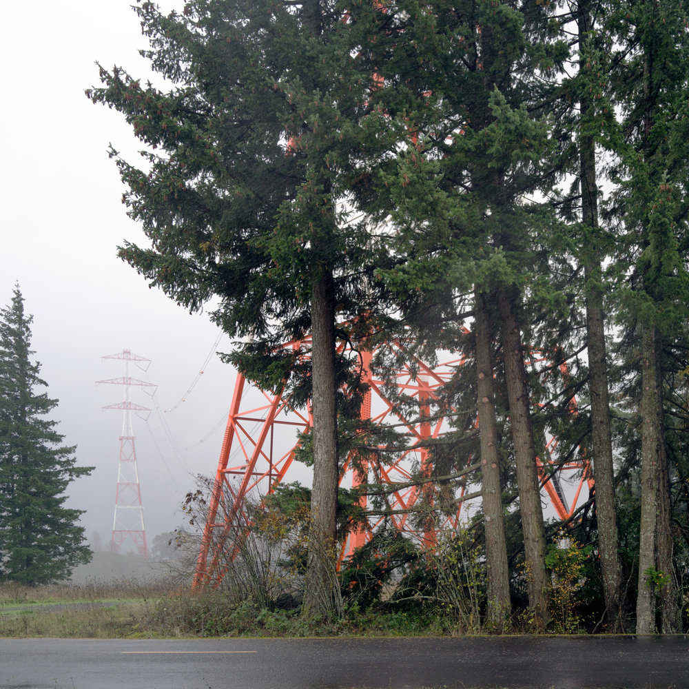 Portland Towers and Trees.jpg