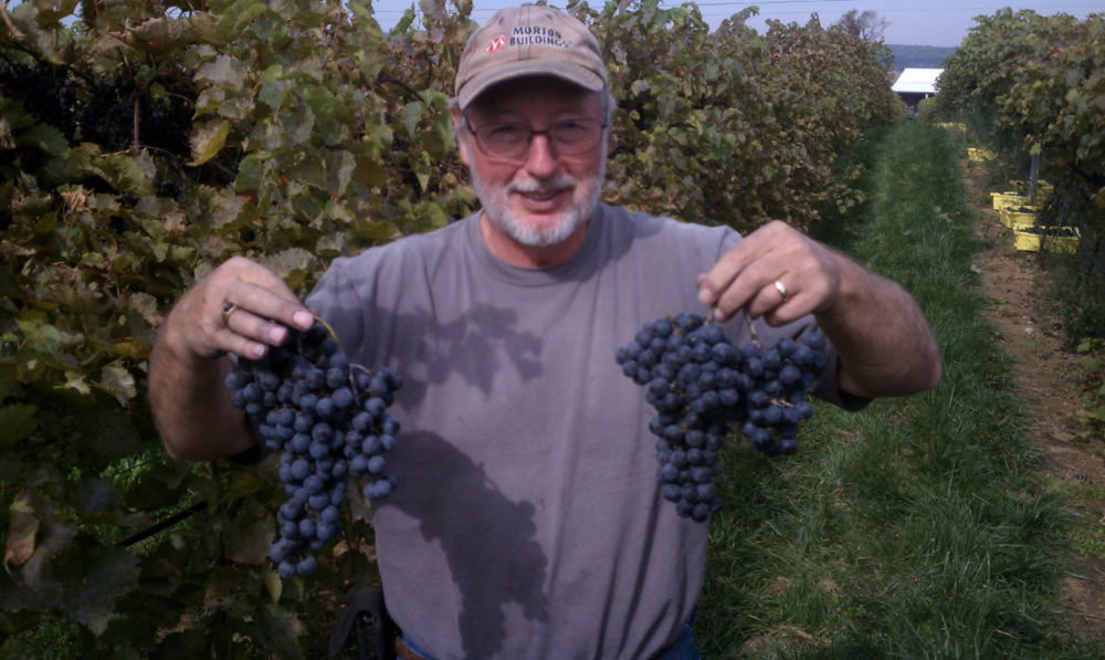 Elwin Stewart proudly displaying some of the 2013 harvest.
