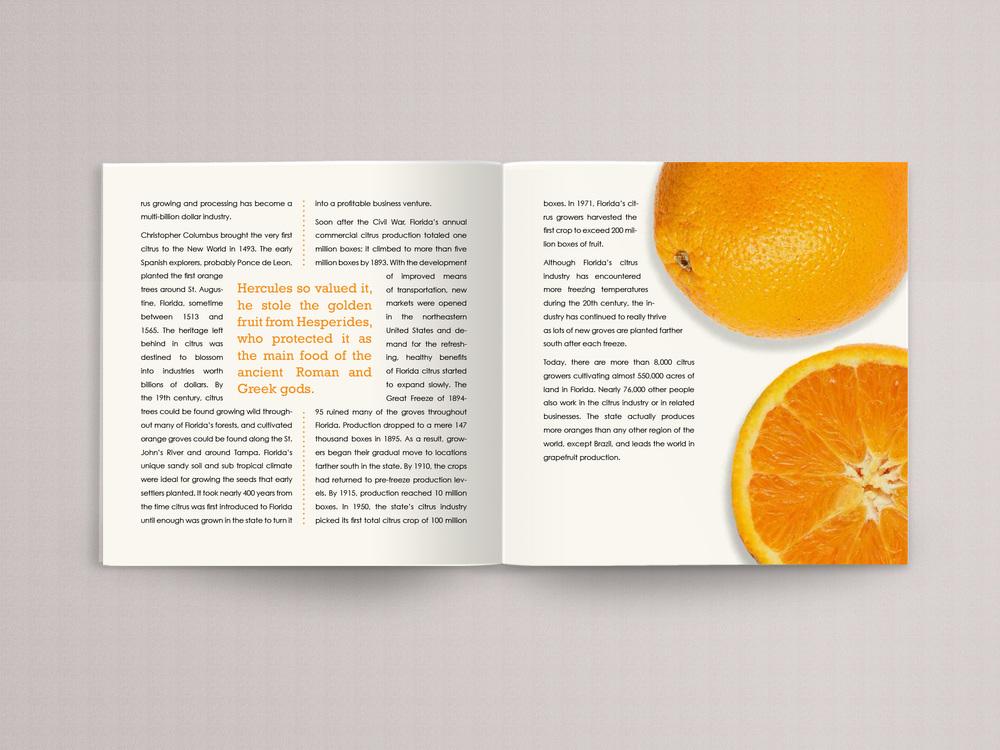 orange book page 5.jpg
