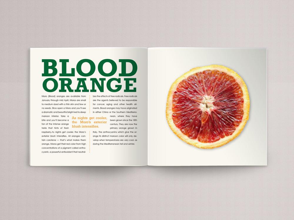 orange book page 10.jpg