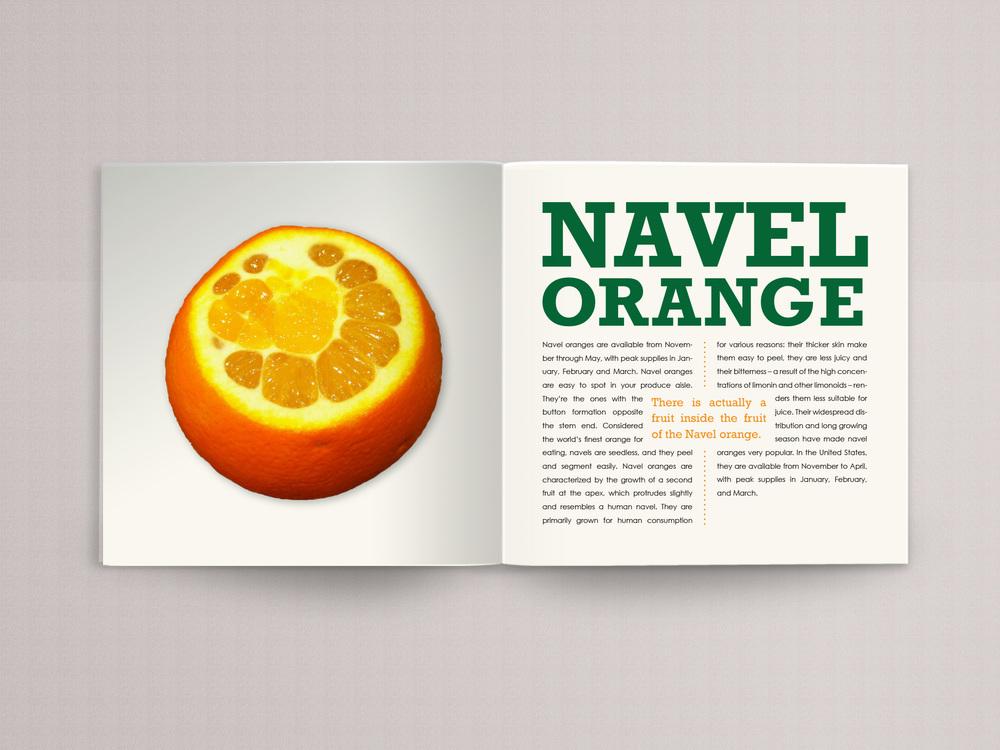 orange book page 11.jpg