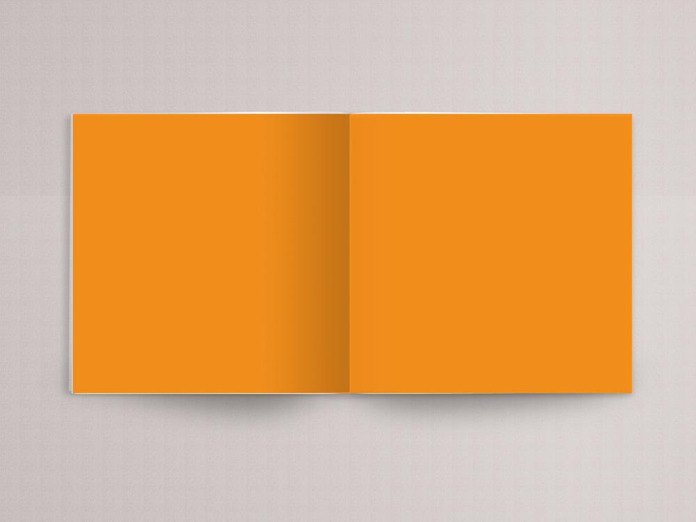 orange book page 1.jpg