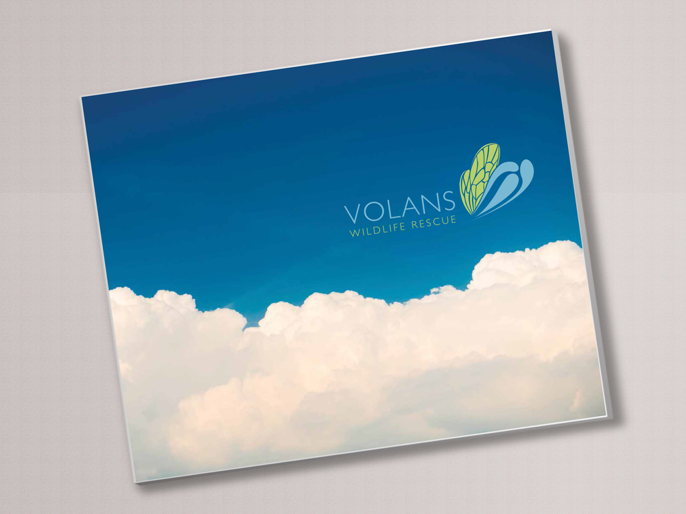volans book cover.jpg