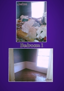 Home Cleanouts 1
