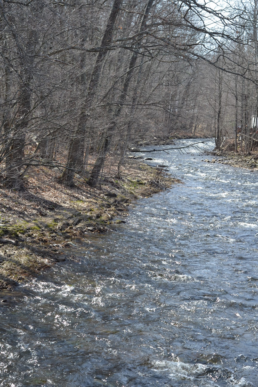 At our facilities in New Hampshire, we are surrounded by the beauty of nature and we work hard everyday to preserve it. Here is a shot of the Minnewawa River that runs next to our building.