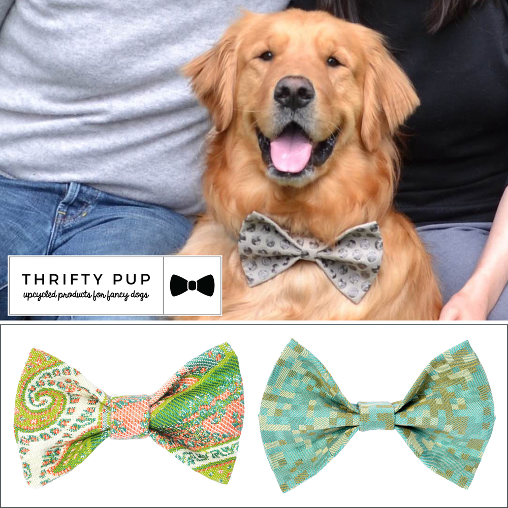 Prize: ThriftyPup.com