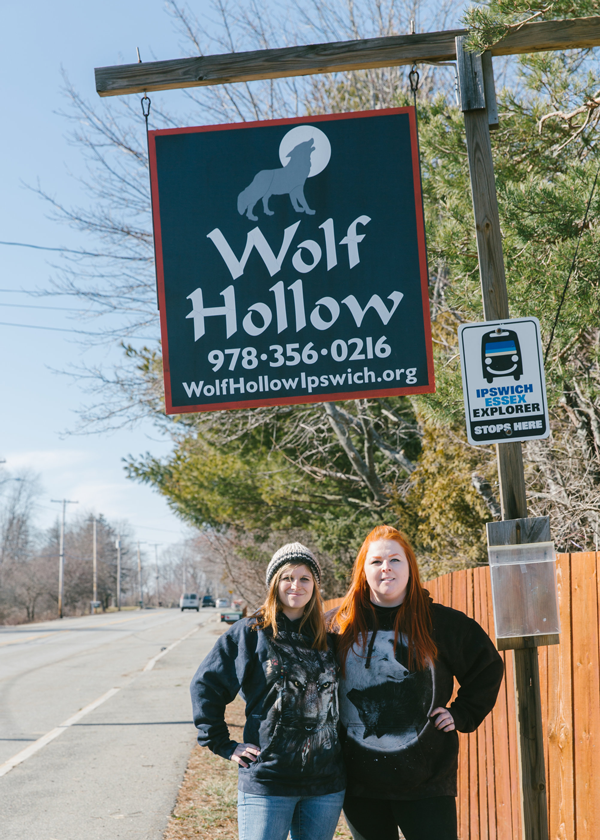 WolfHollowSign.png