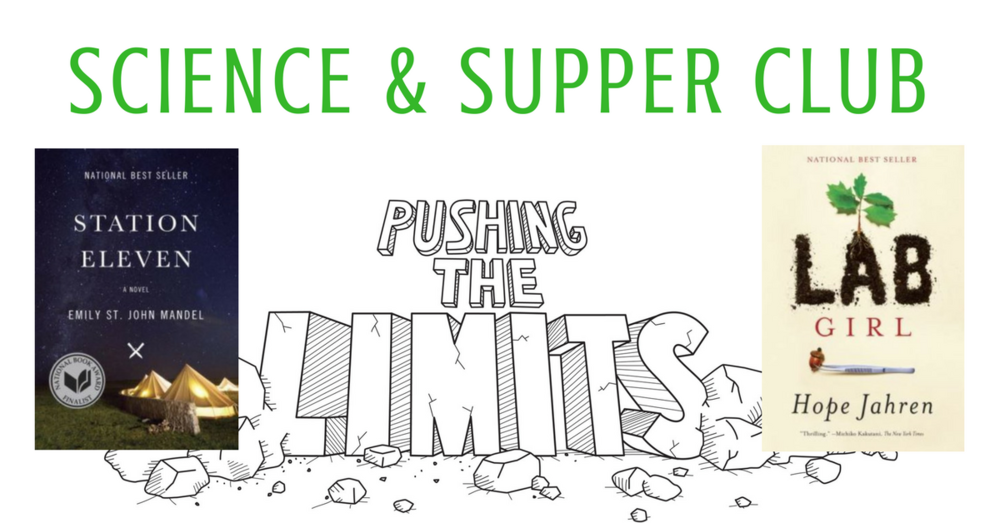 Copy of Pushing the Limits poster (1).png