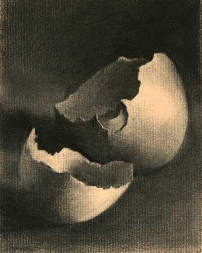 Charcoal Drawing : Egg Shell