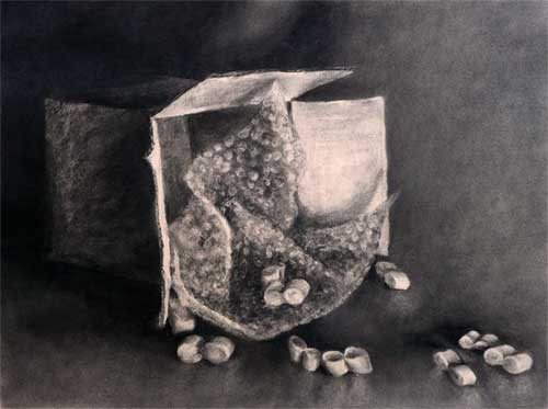 charcoal still life drawing