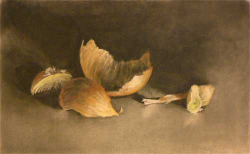 charcoal and pastel still life drawing of an onion skin