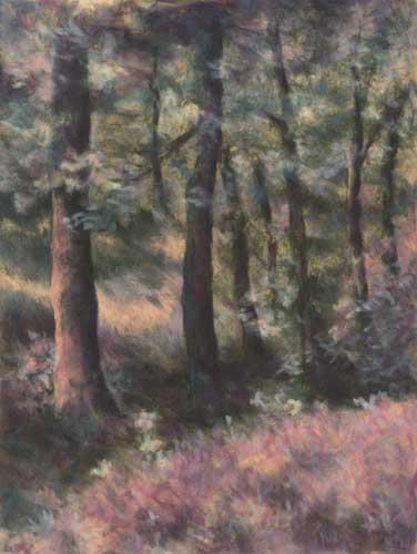 Spring Forest : hand embellished giclee print