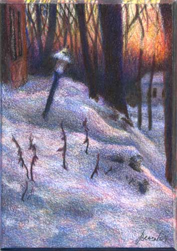 Winter's Fleeting Blush : color pencil miniature landscape drawing