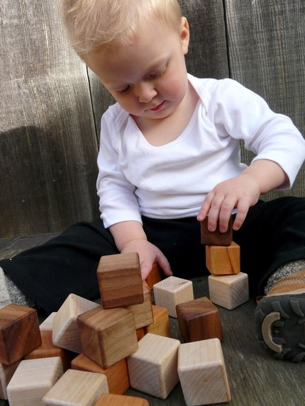 organic wood blocks