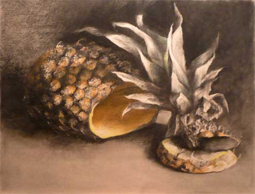 pineapple fruit still life drawing