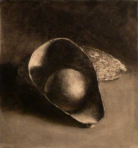 avocado charcoal still life drawing