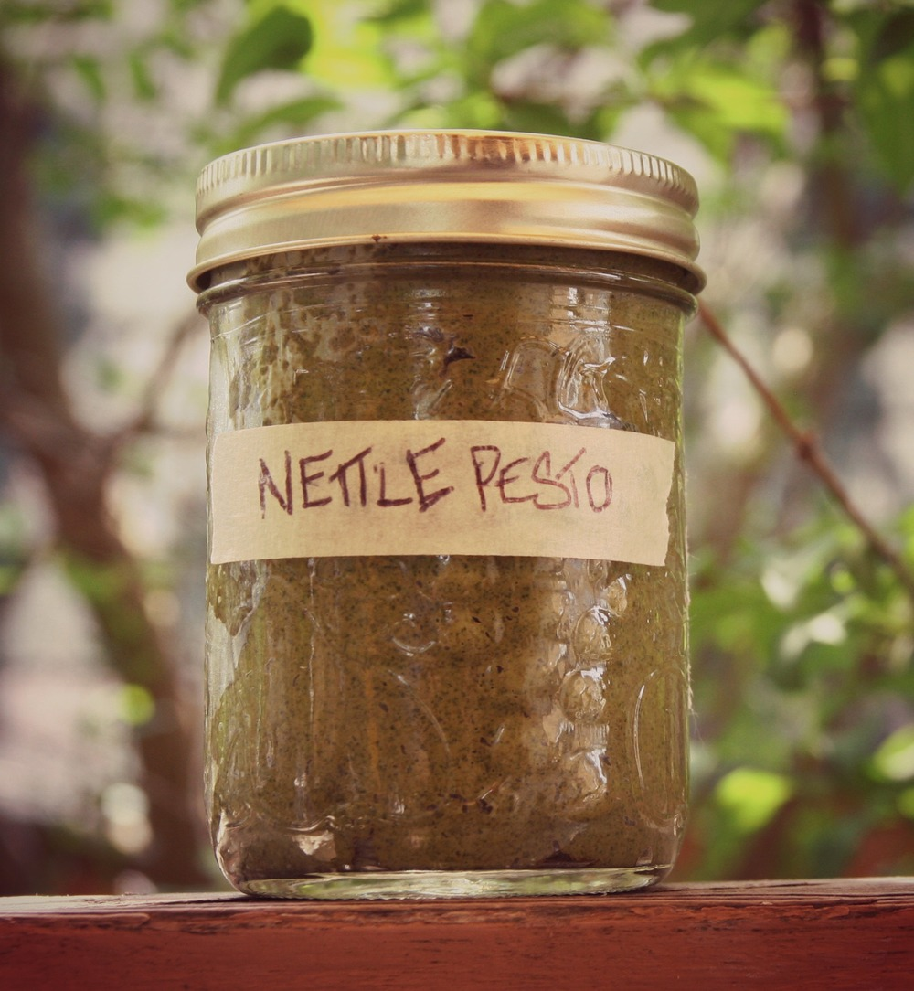 Simple Nettle Pesto